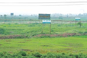 Developers now own most of wetlands