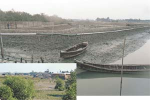 Grabbers feast on Bakkhali river